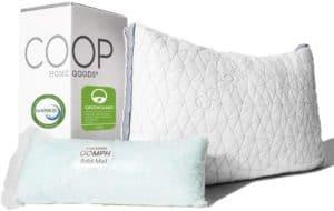 Coop Home Goods - Eden Adjustable Pillow